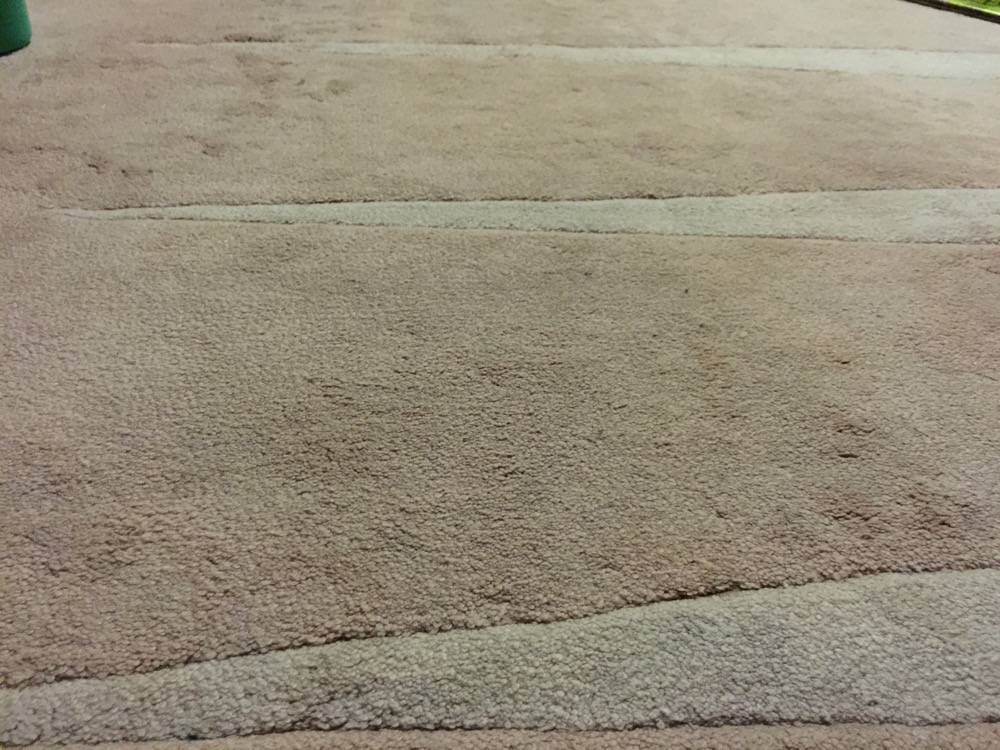 How To Naturally Clean A Carpet Without Steam Cleaner Katesurfs